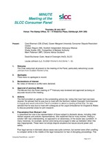 SLCC Consumer Panel Minute July 2017
